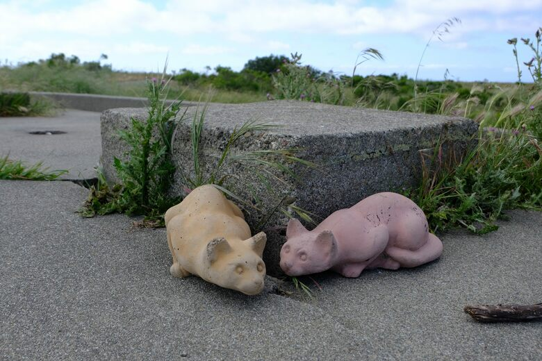 Stone Cats at Nike Missile Site